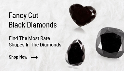 Other Fancy Shape Black Diamonds
