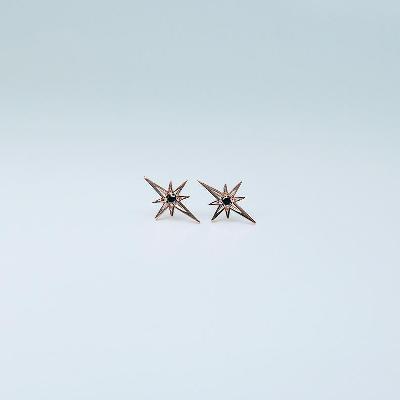 five point star stud earrings